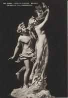 (ART800) BERNINI. APOLO E DAFNE ... UNUSED - Esculturas