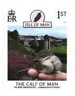 2021 - ISLE OF MAN - PROTEZIONE DELL'AMBIENTE / ENVIRONMENTAL PROTECTION - UCCELLI / BIRDS. MNH - Milieubescherming & Klimaat