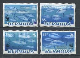 301 BERMUDES 2004 - Yvert 882/85 - WWF Poisson - Neuf ** (MNH) Sans Charniere - Bermuda