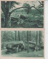 77 FORET DE FONTAINEBLEAU  -  LOT DE 2 CARTES  - - Fontainebleau