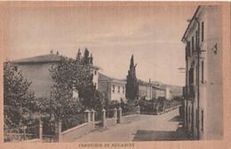 Cartolina - Postcard /  Viaggiata - Sent /  Corrubio Di Negarine - - Altre Città