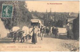 MONTREJEAU - Jour De Foire - Montréjeau