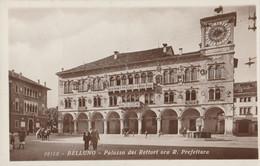 Cartolina - Postcard /  Viaggiata - Sent /   Belluno - Palazzo Dei Rettori. - Belluno