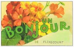 80  UN BONJOUR  DE  FLIXECOURT   CPM  TBE  VR989 - Flixecourt