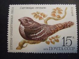 RUSSIA. 1979 European Nightjar (Caprimulgus Europaeus)   MNH** (042603-TVN) - Golondrinas