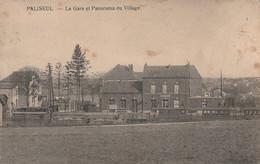 PALISEUL , La Gare Et Panorama Du Village , ( Station Du Tram Vicinal , Wagon ) - Paliseul