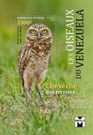 Niger 2021 Birds Of Venezuela. Burrowing Owl.  (117b3) OFFICIAL ISSUE - Eagles & Birds Of Prey