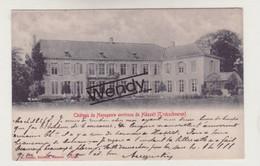 Hasselt (château De Henegauw-Trekschueren) - Hasselt