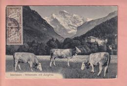 OUDE POSTKAART - ZWITSERLAND -     AGRICULTURE - INTERLAKEN - HOEHEMATTE - BE Berne