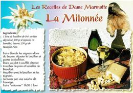 Les Recettes De Dame Marmotte : La Mitonnée - éditions Seca - Neuve - Recipes (cooking)