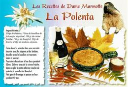 Les Recettes De Dame Marmotte : La Polenta - éditions Seca - Neuve - Recipes (cooking)