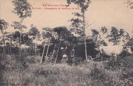 Le Morvan Illustré En Foret Chargement De Charbons De Bois, Rare - Otros Municipios