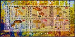 Côte D'Ivoire 3 Blocs Champignons 2013 Neufs Sans Charnière ( Non Référencés) - Ivory Coast (1960-...)