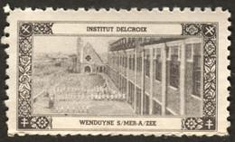 "Belgique Belgie Wenduyne Wenduine ~1920 ? "" Institut Delcroix "" Vignette Cinderella Reklamemarke Sluitzegel - Cinderellas"