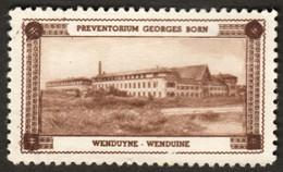 """Belgique Belgie Wenduyne Wenduine ~1920 ? """" Georges Born Preventorium """" Vignette Cinderella Reklamemarke Sluitzegel - Cinderellas"""