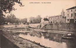 34 Lunel Vu Des Arenes Cpa Cachet 1937 - Lunel
