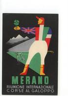 Cartolina Merano Riunione Internazionale Corse Al Galoppo 1953 Non Viaggiata - Altri