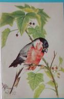 Petit Calendrier De Poche 1977 APBP Illustration  Oiseau Exotique Peint Avec La Bouche  Varrains  Maine Et Loire - Small : 1971-80