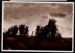 Somalia Italiana - Nuvole (Fotocelere Di A. Campassi - Torino - 1935) - Somalie