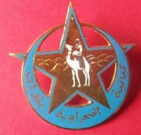 RARE INSIGNE SAHARIEN - 1939-45