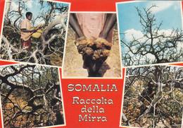 Somalia - Vedutine - Viaggiata - Somalië