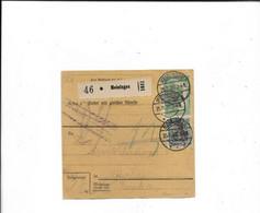 Paketkarte Aus Meiningen 1920 - Covers & Documents