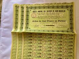 S.A.  Des  TUILERIES  De  Saint-MARCELLIN  ( Loire ) ----------  Lot  De  3  Actions  De  100 Frs - Industrie