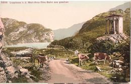 Loppiosee Von D. Mori Arco Riva Bahn Aus Gesehen Garda Nago Torbole Lago Di Loppio Ferrovia MAR Passo San Giovanni - Other Cities