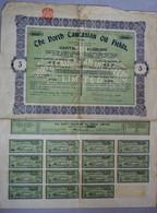 Titre Au Porteur De Cinq Actions The North Caucasian Oil Fields Avec15 Coupons 1920 - Oil