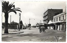 MAROC - FEDALA - Avenue De La Marne - Sin Clasificación