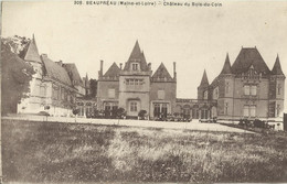 10791 CPA Beaupreau - Château Du Bois Du Coin - Otros Municipios