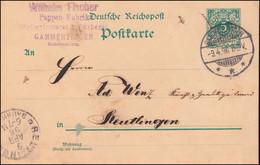 Postkarte P 36 Ziffer 5 Pf. Ohne DV, GAMMERTINGEN 9.4.1896 Nach REUTLINGEN - Stamped Stationery