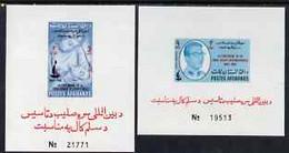 Afghanistan 1963 Red Cross Set Of 2 Imperforate Miniature Sheets, U/m - Afganistán