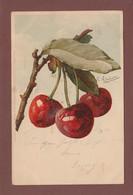 Catharina KLEIN - Signé - Fruit - Cerise - Klein, Catharina