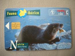 7014 Télécarte Collection LOUTRE  Nutria   Lutra   Espagne    ( Recto Verso)  Carte Téléphonique - Altri