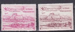 DINANT   Exposition D'Art Dinantais   1907 Vignette - Unclassified
