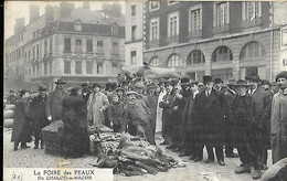 La Foire Des Peaux De Chalon Sur Saône 27 Fevrier - Chalon Sur Saone