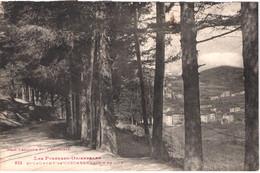 FR66 SAINT LAURENT DE CERDANS - Labouche 825 - Chemin De L'ille - Le Village En Arrière Plan - Belle - Other Municipalities