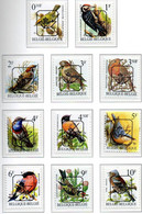 Oiseaux - Birds- Vogels XXX - Nuevos