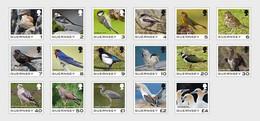 Guernsey MNH ** 2021  Guernsey Definitive - Birds - Guernsey
