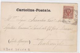 1901 Veneto, Cartolina Di Belluno Con Annullo Tondo-riquadrato Di Selva Bellunese, Raro - Storia Postale
