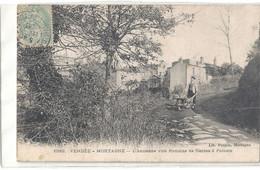 L Ancienne Voie Romaine De Nantes Poitiers - Mortagne Sur Sevre