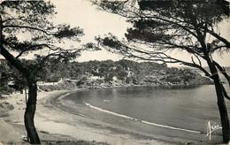 83-LA SEYNE SUR MER-N°3021-C/0291 - La Seyne-sur-Mer
