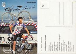 CARTE CYCLISME DAVIDE CASSANI SIGNEE TEAM TERMOLAN 1983 - Cycling