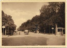 1928-Parma Viale Umberto I - Parma