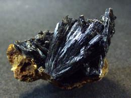 Vivianite Var. Kerchenite   ( 3 X 2 X 1.5 Cm )  - Kerch -  Crimea Peninsula, Crimea Oblast', Ukraine. - Minerals