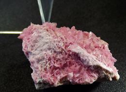 Rhodochrosite  (3 X 2 X 1 Cm ) - Cavnic Mine - Maramures - Romania - Minerals