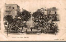 TUNISIE TUNIS L'AVENUE DE FRANCE - Tunisia