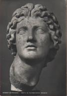 Museo Barocco. Testa Di Alessandro Magno. Non Viaggiata - Unclassified