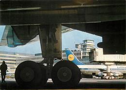 Aviation - Aéroport - Frankfurt - Lufthansa - Airport - CPM - Voir Scans Recto-Verso - Autres